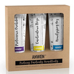 Anwen Zestaw odżywek do włosów o wysokiej porowatości 3x100ml
