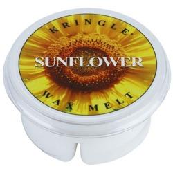 Kringle Candle Wax melt Wosk Sunflower
