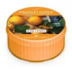 Kringle Candle daylight świeczka zapachowa Iced Citrus 42g