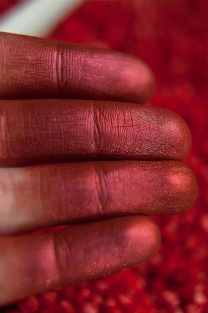 Tammy Tanuka Pigment do powiek 172 1ml